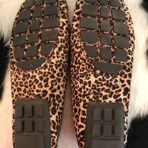 afb043c1ea5 Lauren Ralph Lauren Shoes - Ralph Lauren Carley II driver moccasins